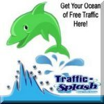 Traffic splash